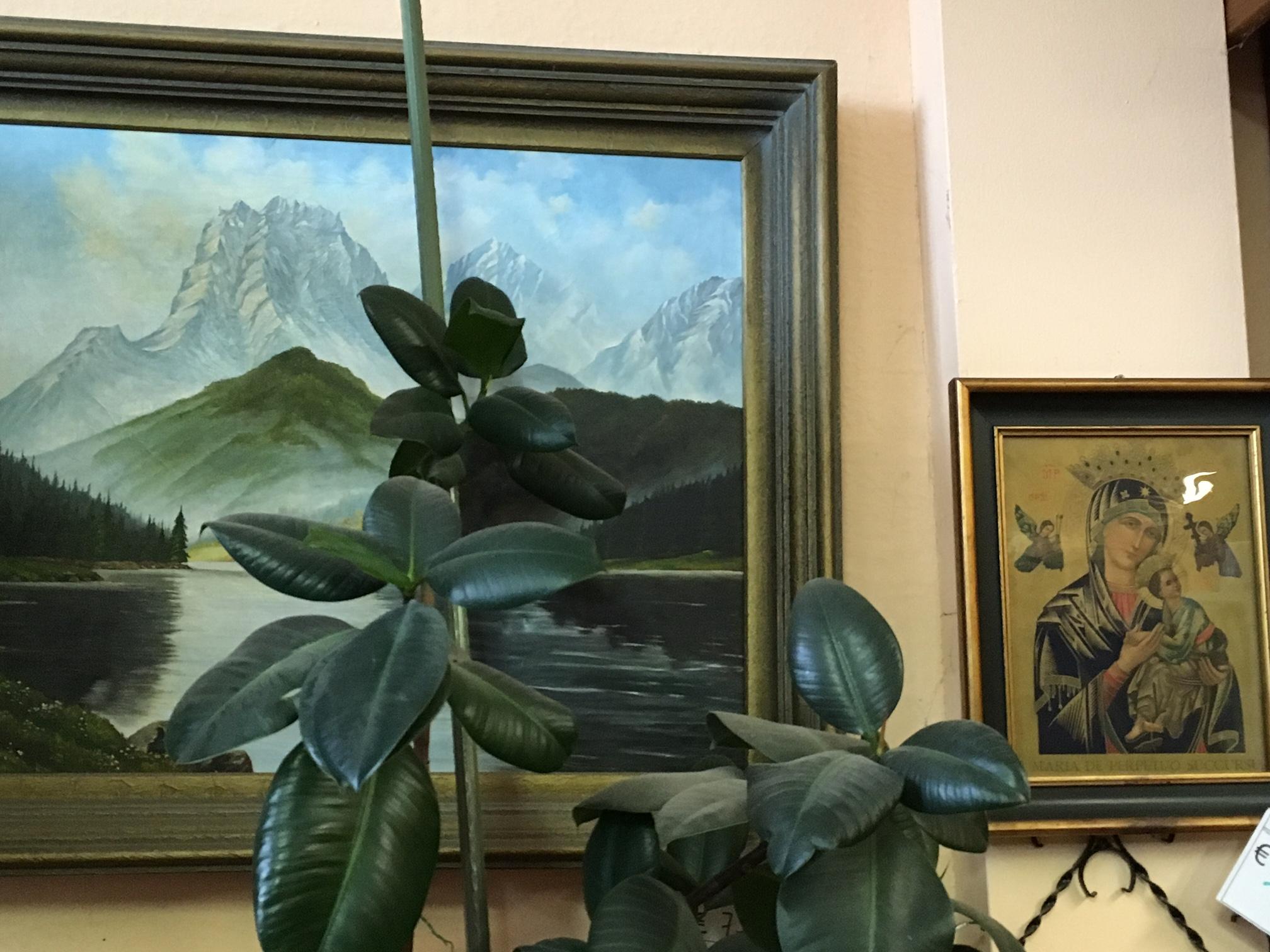 Gerahmte Bilder, Gemälde und Kunstdrucke | Paderborner Umweltwerkstatt